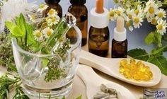 أهم الأعشاب التي يجب الإمتناع عنها أثناء…: برغم أن الطب البديل والأعشاب والنباتات الطبية قد اُستخدمت منذ قرون لعلاج العديد من الأمراض، ولا…