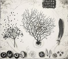 an accidental mystery/ by  fiona watson  etching edition of 40 - 53 x 59 cm on 310 g Hahnemuhle paper