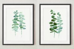 Eucalyptus Giclee Fine Art Print set 2 Green by ColorWatercolor