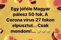 Egy jóféle magyar pálesz 50 fok. A koronavírus 27 fokon elpusztul. Csak mondom... Jokes, Lol, Funny, Comic, Corona, Laughing So Hard, Chistes, Husky Jokes, Comic Strips