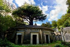 Highgate Cemetery London - Circle of Lebanon, named after the Lebanese Cedar on top! Highgate Cemetery London, Halloween Images, Old English, Google Images, Abandoned, Explore, Mansions, Architecture, House Styles