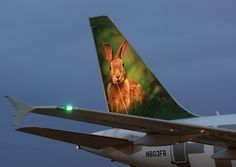 Frontier Airlines Airbus A318-111 N803FR 'Stu the rabbit'