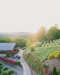 10 Vineyards Outside of California Where You Can Get Married: Wolf Mountain Vineyards & Winery in Dahlonega, Georgia.