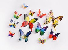 Butterfly Wall Stickers Decals from Wall Decals, Irelands largest range of kids wall stickers, wall decals and custom wall stickers available. Custom Wall Stickers, 3d Wall Decals, 3d Butterfly Wall Stickers, Transparent Stickers, Range, Cookers