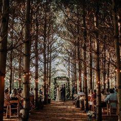 23 of ohios top wedding venues 32 romantic and creative woodland wedding ideas Wedding Reception Ideas, Forest Wedding Venue, Outside Wedding, Wedding In The Woods, Woodland Wedding, Wedding Tips, Fall Wedding, Wedding Planning, Dream Wedding
