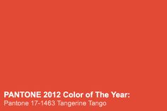 "Not sure if I like this color...   "" 'Tangerine Tango' otherwise known as PANTONE 17-1463. An exotic and provocative reddish-orange with what feels like a pink undertone, this hue is anything but subtle."""