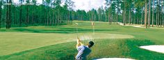 Grand Bear Golf Course au Mississippi - Gendron Golf