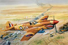 Roy Cross's Curtiss P-40 Kittyhawk (AIRFIX kit 1/72 scale)