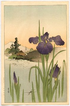 YOSHIMOTO Gesso(吉本月荘 Japanese, 1881-1936) Iris on the Riverside woodblock print via
