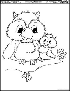 Image detail for -Owl-owlet-branch-colouring-picture.gif