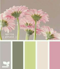 Design Seeds, for all who love color. Apple Yarns uses Design Seeds for color inspiration for knitting and crochet projects. Colour Pallette, Color Palate, Colour Schemes, Color Combos, Spring Color Palette, Design Seeds, Pantone, Colour Board, Little Girl Rooms