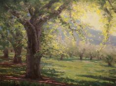 Afternoon Orchard Light, painting by artist Jason Tako