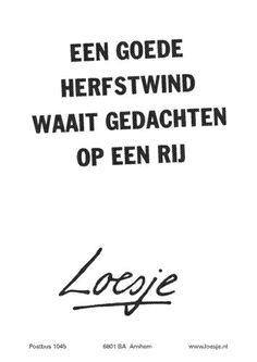 loesje spreuken herfst 254 beste afbeeldingen van Loesje   Dutch quotes, Wise words en  loesje spreuken herfst
