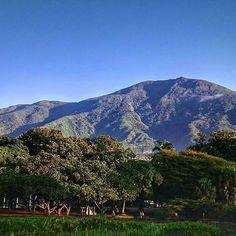 Excelente jueves!  #LaCuadraU #Caracas #GaleriaLCU #ElAvila #Nature #Naturaleza