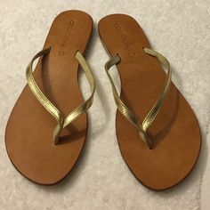 Women cocobelle sandals Women cocobelle sandals size 11 never used no box Cocobelle Shoes Sandals