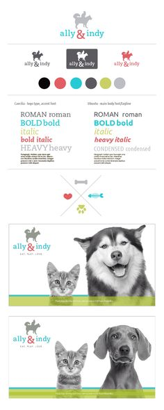 Logo design and brand board for coming alexandria pet supply store.