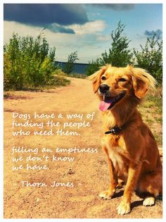 Dog Quote Natur Love