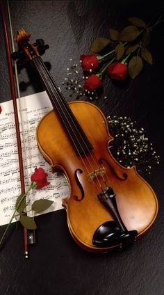 A gorgeous violin, beautiful red roses, and sheet music background. Sound Of Music, Music Is Life, My Music, Rose Music, Musica Celestial, Color Splash Photo, Peace And Love, My Love, Violin Music