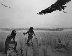 Hiroshi Sugimoto - Dioramas, Homo Ergaster (1997)