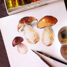 watercolors More