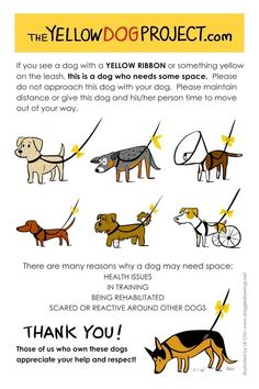 Repost for this to work. It is a great idea for rehabilitating dogs that might have issues in public but are trying so hard to work them out! Now we need to educate all of the people they might encounter.