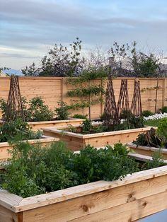 Vegetable Planters, Vegetable Garden Design, Veg Garden, Studio Mcgee, Raised Garden Bed Plans, Raised Beds, Beautiful Farm, Garden Studio, Garden Boxes