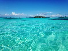 Not Quite Seasoned, but Very Well Salted: The Tobago Cays