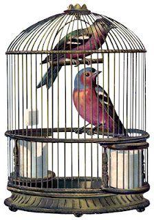Vintage Graphic Fabulous Bird Cage with Birds The Graphics Fairy Vintage Birds, Vintage Ephemera, Vintage Postcards, Vintage Images, Vintage Birdcage, Robin Vogel, Cage Deco, Vogel Illustration, Antique Bird Cages