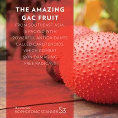 Strawberry, Nutrition, Fruit, Nu Skin, Health, Food, Life, Health Care, Essen