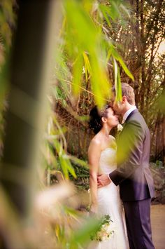 Bamboo Wedding...Lisa Michele Burns