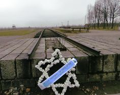 "ajjadlowski: A wreath in the form of the Star of David at the end of the railroad at the Auschwitz II-Birkenau concentration camp just outside of Krakow, Poland. The end of the train tracks was the start of the selection process for the Jewish people during the Nazi Party's ""Final Solution"" during World War II. Photograph by Joey Jadlowski"