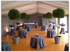 events with topiary | Topiary Wedding Hire | Your special day, made perfect.
