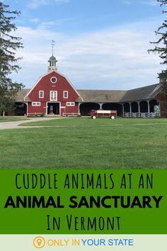 Take a tour of this animal sanctuary in Vermont and enjoy the opportunity to cuddle cute animals. It makes for a great family-friendly day trip or unique date idea. Vacation Trips, Dream Vacations, Travel Goals, Travel Tips, Unique Date Ideas, Beautiful Places In America, Girlfriends Getaway, Hidden Beach, Adventure Is Out There