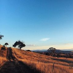 """Daylight savings means back to my favourite evening walks. Do you have any Canberra faves?"" Thanks to Instagrammer @megan_sparke for sharing this snapshot of the gorgeous walk at The Pinnacle Nature Reserve. #visitcanberra"