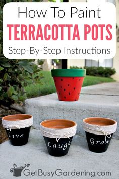 Painting terracotta pots is a fun way to add color to your home, or for for outside on the patio or in your gardens. Hand painted terracotta planters are perfect for growing lots of different types of plants, like succulents or herbs, and there are tons of different DIY design ideas or simple projects you can make with them. Follow these detailed step-by-step instructions to learn how to paint clay pots for outdoor or indoor use. #terracottapots #planters #gardening #diy #project