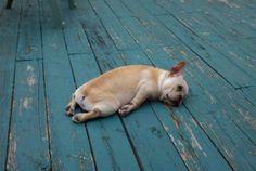 Life...is just toooo hard :(
