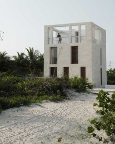 plug architecture / lookout tower house