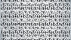 CRISPR toolbox gets two new molecular gadgets, boosting gene-editing