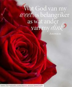 Wat God van my weet, is belangriker as wat ander van my dink. All Quotes, Bible Quotes, Bible Verses, Afrikaanse Quotes, Special Quotes, Word Pictures, Amai, Printable Quotes, Christian Inspiration
