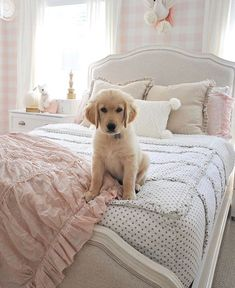 I am not sure what is cuter...the puppy or the bedroom! With Beddy's all you do is Zip your bed and you are good to go for the day! 📷 : @dearlillie #beddys #zipyourbed #zipperbeading #adultbedding #fashionablebedding #bedding #beddings #stylish #homedecor #homeinspo #homedecoration #bedroomdesign #bedroomgoals Dream Bedroom, Girls Bedroom, Bedroom Decor, Bedroom Ideas, Benjamin Moore, Minnie Mouse House, Zipper Bedding, Dear Lillie, Floral Room