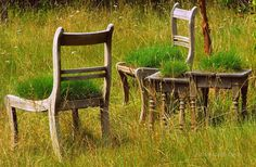 #grass awesome chair sidetable furniture planted grass in field