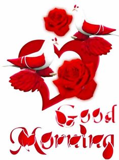 Good Morning Sunday Pictures, Very Good Morning Images, Good Morning Flowers Pictures, Good Morning Friends Images, Good Morning Beautiful Flowers, Beautiful Morning Messages, Good Night Love Images, Good Morning Cards, Good Morning Picture