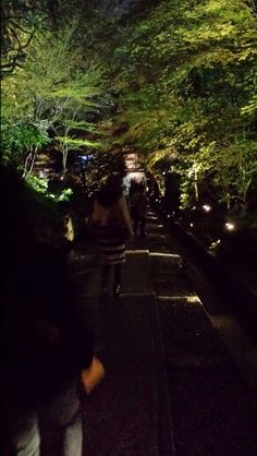 KODAIJI Gaeden night view