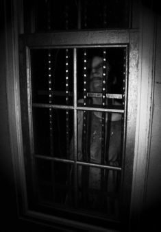Don´t Let Her Out | Frank T. Zumbachs Mysterious World