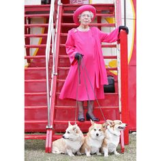 The  Queen with her corgis - Bing Images