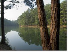 Red Top Mountain State Park.  Camping, Hiking, swimming beach, and mountain cove discovery room