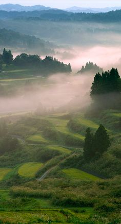 Terraced paddies in Tōkamachi, Japan • photo: Privacy Policy / Getty Images
