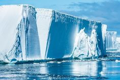 Photo by @FransLanting Here is a small portion of one of the biggest icebergs to break off from the Antarctic ice shelf in recent history. This gigantic tabular iceberg was tracked by satellite and measured at more than 4,000 square miles—or 11,000 square kilometers—that's a quarter the size of my home country, the Netherlands! It's broken apart now into many smaller pieces that are melting away along the edge of the Antarctic Peninsula. Big changes are underway in Antarctica as a result of…