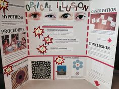 Optical Illusion - Science Project 2014