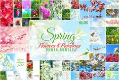 Spring Flowers and Paintings Bundle by pixaroma on @creativemarket